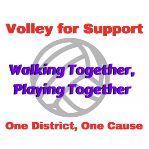 Volley for Support Logo