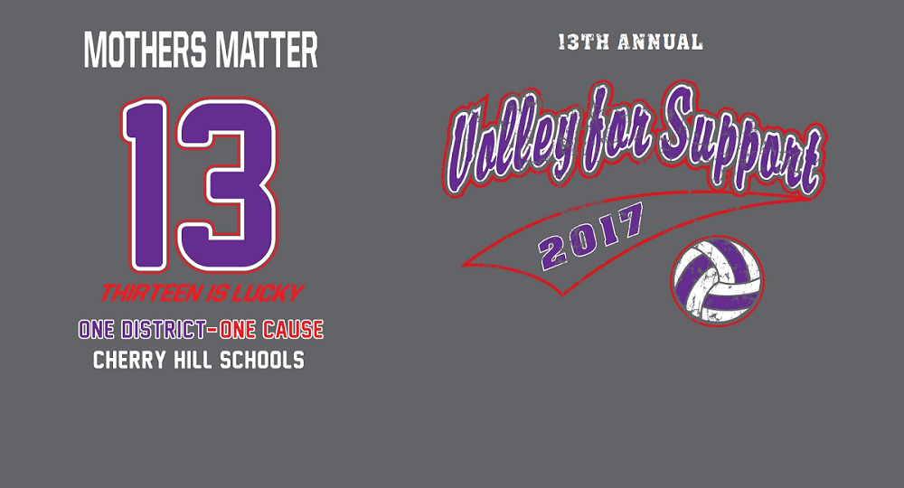 13th Annual Volley for Support