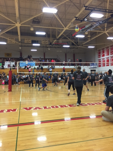 2017 Volley for Support
